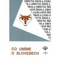 Co umíme o slovesech