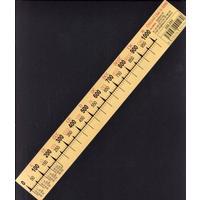 Číselná osa 0-1000 -- popisovatelná   /lamino 30cm x 4cm/
