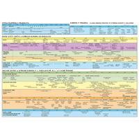 Období pravěku a starověku - synchronní časové tabulka