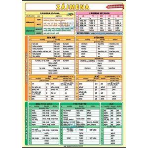 Zájmena - skloňování  (tabulka 1xA4)