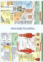 Biologie člověka - TABULKA 2xA4
